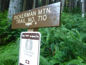 Mt Dickerman trail head